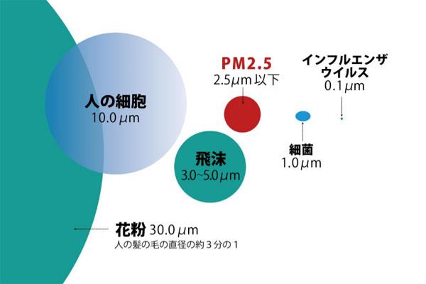粒子の大きさの比較